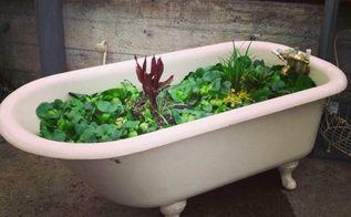 garden junk man style, container gardening, gardening, repurposing upcycling, succulents, Rub a Dub pond in an antique tub Milner Village Garden Center
