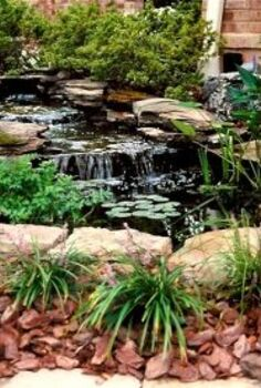do you have room for a pond in your yard, outdoor living, ponds water features