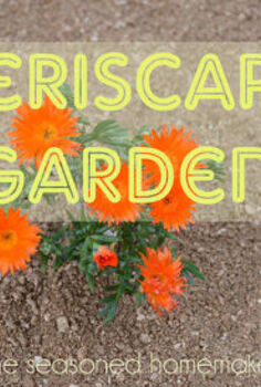 creating a xeriscape garden, gardening, With rain in short supply here in Texas we decided to not replace dead grass Instead we created a xeriscape garden