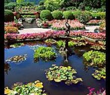 what do you know about italian gardens, gardening