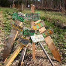 practips gardener s advice tips for spring planting, gardening