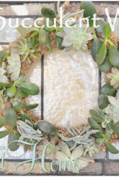 diy live succulent wreath, crafts, succulents, wreaths, Love my wreath It s been hanging right here for months and it s doing great