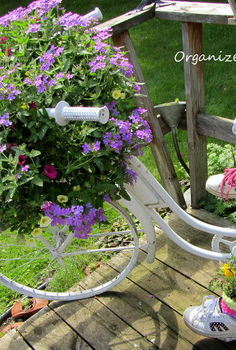 add a bike to the garden just for fun, flowers, gardening, outdoor living, repurposing upcycling, My bike has annuals planted in a coconut liner in the basket