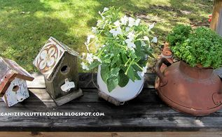 do you ever find great garden junk at garage sales, garages, gardening, repurposing upcycling, A boxwood basil in a terra cotta pot tucked in the milk can top
