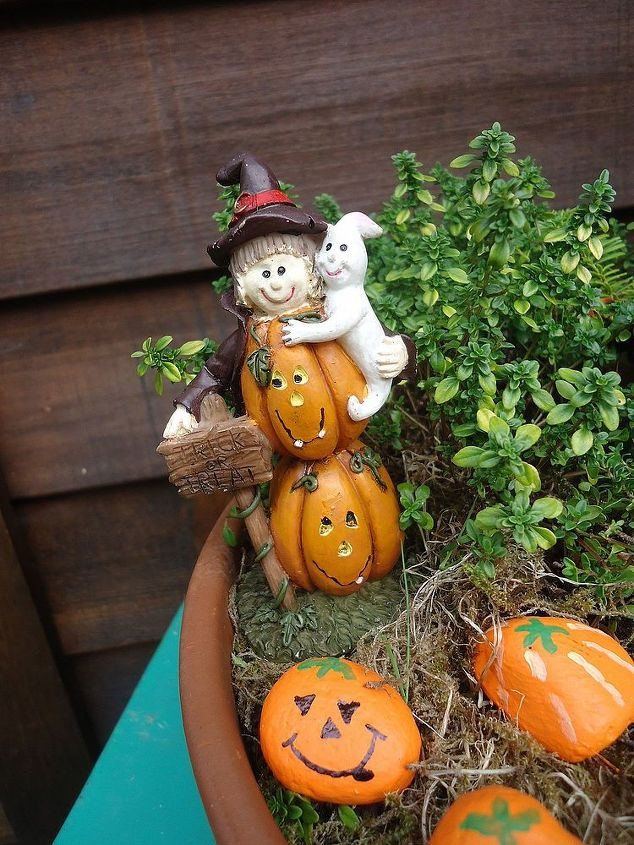create a halloween miniature garden crafts gardening halloween decorations seasonal holiday decor