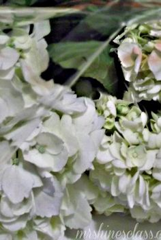 diy fresh flower preservative, flowers, gardening