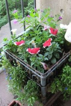 using plastic crates for gardening, gardening, raised garden beds, repurposing upcycling, urban living, compact and easy to move