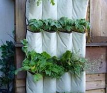 build a vertical garden and turn a small space into a big harvest, flowers, gardening, repurposing upcycling, succulents, urban living