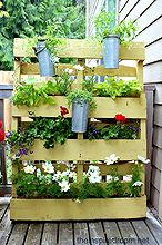 from pallet to privacy screen planter, flowers, gardening, pallet, My pallet garden privacy screen