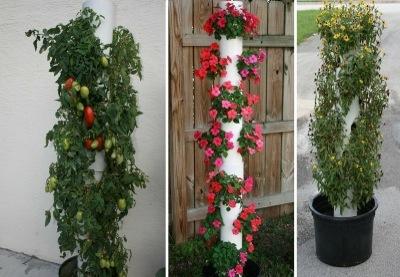 Diy Vertical Garden Ideas Hometalk