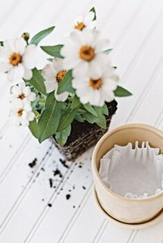 discover six amazing new uses for coffee filters, crafts, repurposing upcycling, Coffee filters help keep your soil in place