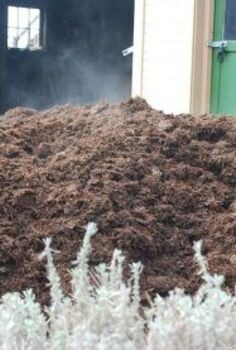 tips for applying mulch, container gardening, gardening, Beautiful Glorious Delicious say my plants