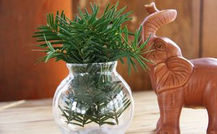 decorating with greenery, home decor, It s amazing what a little greenery can do to improve the mood in your home