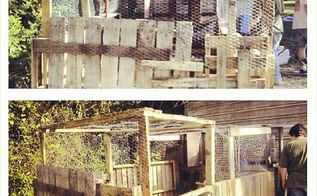 chicken run for, diy, homesteading, pets animals, woodworking projects