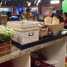 earth day tv appearance for hometalk, crafts, repurposing upcycling