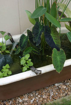 container water gardens, outdoor living, patio, ponds water features, Got an old bathtub Don t toss it stick it in the garden and fill it with aquatic plants and a fountain