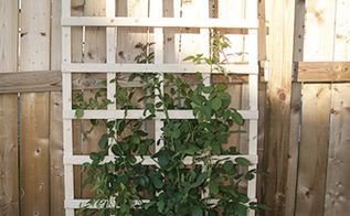 diy garden trellis, diy, gardening