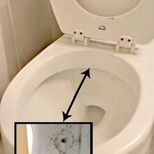 keep a toilet clean much longer, bathroom ideas, cleaning tips, Siphon jets below the rim of the toilet bowl