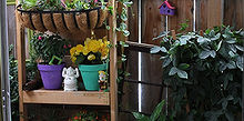 top ten ways to decorate a small apartment garden, gardening, urban living, Fun and colorful patio pots