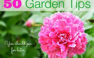 50 garden tips, gardening