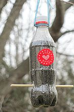 thistle bird feeder, gardening, A small Coke bottle turned into a thistle feeder