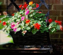 use impatiens and baskets to get a quick gorgeous garden look, container gardening, gardening