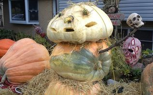 pumpkin snowman, gardening, halloween decorations, seasonal holiday d cor, Getting ready for Halloween Had a lot of extra pumpkins 400 350 a 250 lb head