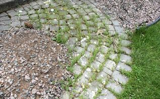 the most obvious weed killer and preventer ever, gardening, landscape, Weed disaster