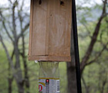 carpenter bee trap, outdoor living, pest control, woodworking projects