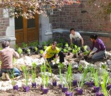 rain gardens how gardeners will save the world, gardening, go green