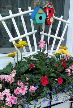 the merry merry month of may, flowers, gardening, hydrangea, windowbox with mandevilla azaleas gerber daisies and lobelia