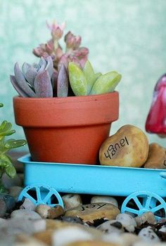 fairy garden, gardening, succulents, Tiny details An impossible small clay pot holds cuttings It rests inside a blue wagon that was once a Christmas ornament AugustGarden