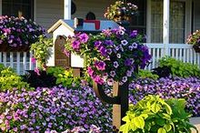 we received word over the christmas holidays that our patent has been granted for our, gardening, outdoor living, Curb Appeal Starts At The Curb Creative Mailbox Planters easy to install over your existing mailbox Paint Plant and Bring A Smile To Your Community and Mail Carrier