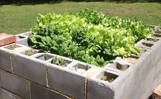 old well house converted to lettuce bed, diy, gardening, repurposing upcycling