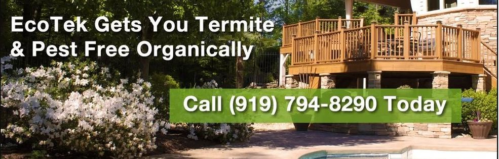 EcoTek Termite and Pest Control cover photo