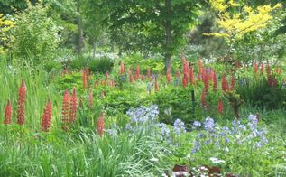 heritage style gardening, flowers, gardening, perennials, Using old fashioned plants and planting in a natural style