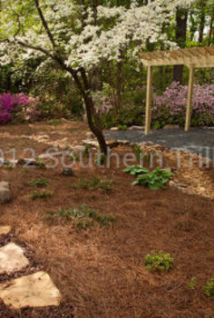 here is what you can do with a mostly shady backyard get rid of the grass and make, flowers, gardening, landscape, outdoor living, patio, perennial, The view coming around the house from the driveway