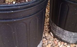 q what is this white powder on my pots, cleaning tips, container gardening, gardening