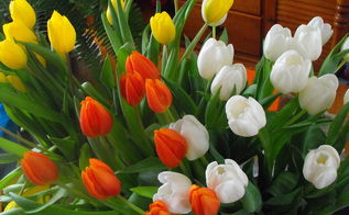 spring, container gardening, easter decorations, flowers, gardening, seasonal holiday d cor, Tulips I bought on sale for my birthday I couldn t just stop at one color