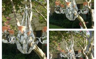 this chandelier is for the birds, gardening, repurposing upcycling, Hanging out waiting for feathered friends