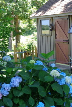 my garden house, gardening