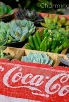 vintage soda crate planter, flowers, gardening, repurposing upcycling, succulents, Vintage soda crate planter