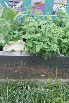junk garden decor, gardening, home decor, tool boxes are perfect planters