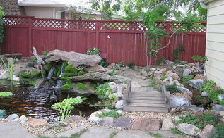 water gardening ponds water features waterfalls koi ponds outdoor lifestyles, outdoor living, ponds water features, The moss on the rock with the waterfall is a beautiful addition to the is Colorado pond