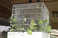 birdhouses, outdoor living, repurposing upcycling