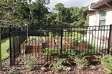 new pictures, gardening, landscape, raised garden beds, Fence protecting vegtable garden from deer
