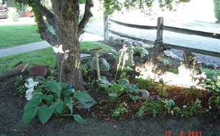 flower beds, flowers, gardening, The tree is a flowering crab Removed rock and planted shade plants here mostly hosta