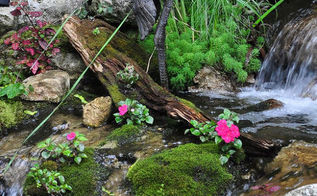 water features big and small to inspire you, gardening, landscape, ponds water features