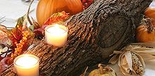 rustic log centerpiece, christmas decorations, seasonal holiday decor, thanksgiving decorations, Decorated for Thanksgiving