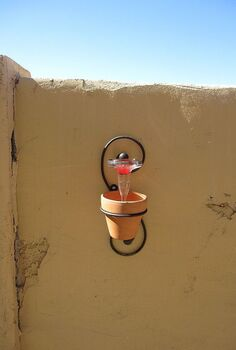 impromptu hummingbird feeder, flowers, gardening